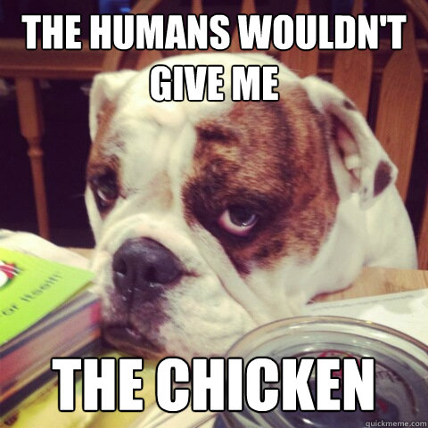 The humans wouldn't give me the chicken