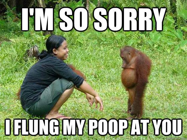 Regretful Monkey Memes Quickmeme