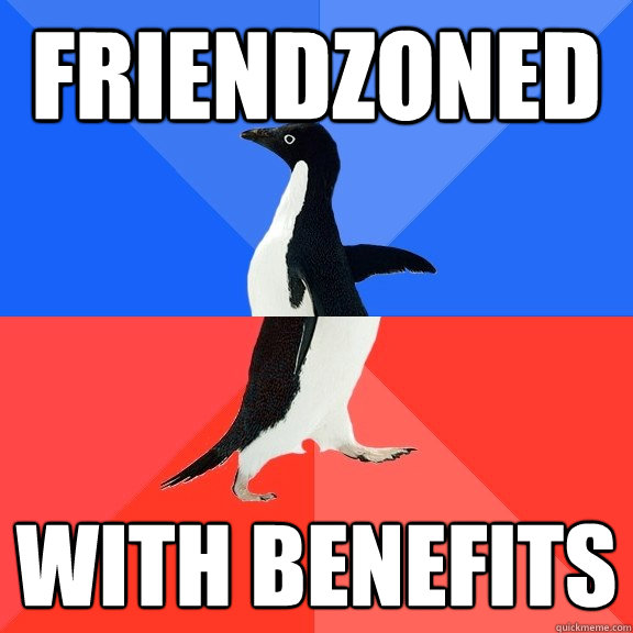 friendzoned with benefits - friendzoned with benefits  Socially Awkward Awesome Penguin