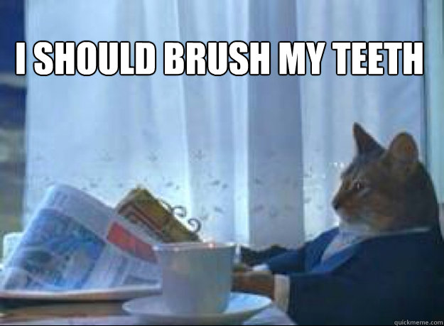 I should brush my teeth  - I should brush my teeth   I should buy a boat cat