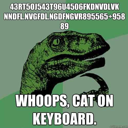 43rt5oj543t96u4506fkdnvdlvk nndfl.nvgfdl.ngdfngvr895565+95889 whoops, cat on keyboard.  Philosoraptor