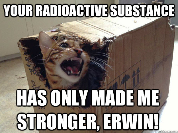 your radioactive substance has only made me stronger, erwin! - your radioactive substance has only made me stronger, erwin!  schrodinger cat
