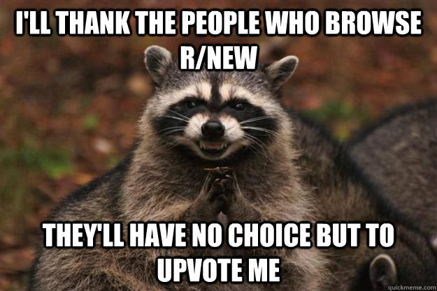 I'll thank the people who browse r/new They'll have no choice but to upvote me  Evil Plotting Raccoon
