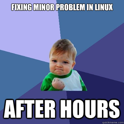 fixing minor problem in linux after hours  Success Kid