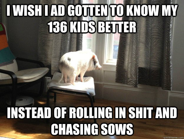 i wish i ad gotten to know my 136 kids better instead of rolling in shit and chasing sows