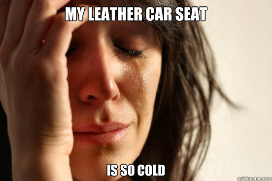 my leather car seat is so cold - my leather car seat is so cold  First World Problems