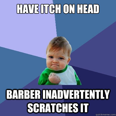 have itch on head barber inadvertently scratches it - have itch on head barber inadvertently scratches it  Success Kid