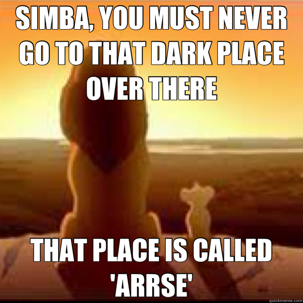 SIMBA, YOU MUST NEVER GO TO THAT DARK PLACE OVER THERE THAT PLACE IS CALLED 'ARRSE'