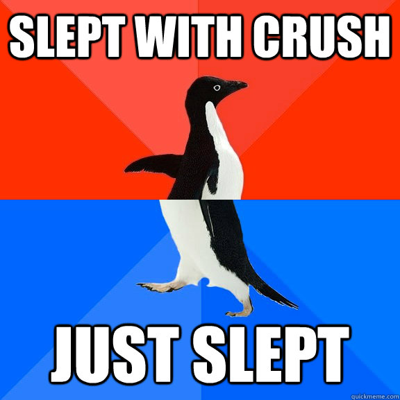 slept with crush just slept - slept with crush just slept  Socially Awesome Awkward Penguin