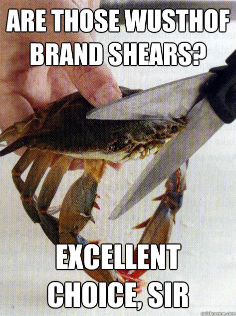 Are those wusthof brand shears? excellent choice, sir  Optimistic Crab