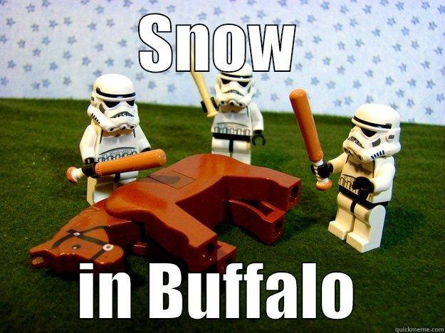SNOW IN BUFFALO Dead Horse