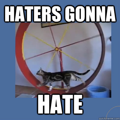 Haters gonna hate - Haters gonna hate  haters cat