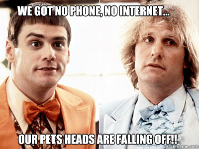 our pets heads are falling off!! we got no phone, no internet...