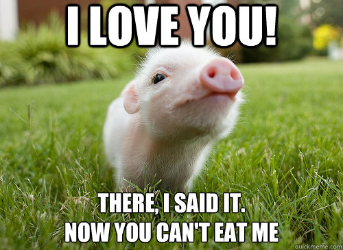 I Love you! there, i said it. now you can't eat me