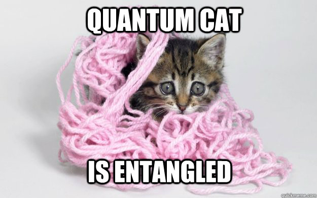 quantum cat is entangled - quantum cat is entangled  Misc