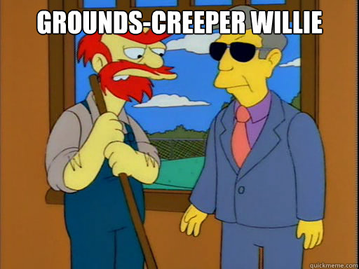 Grounds-creeper Willie