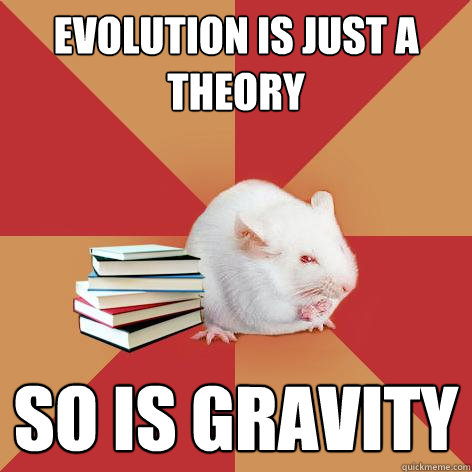 Evolution is just a theory So is gravity - Evolution is just a theory So is gravity  Science Major Mouse