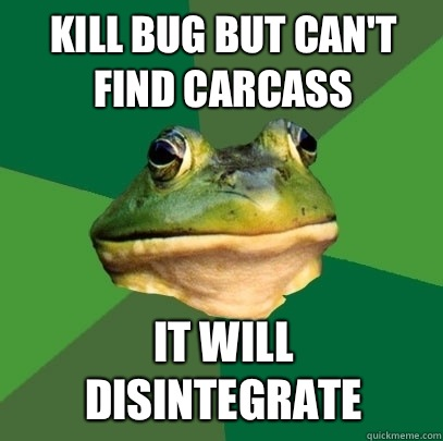 Kill bug but can't find carcass  It will disintegrate  - Kill bug but can't find carcass  It will disintegrate   Foul Bachelor Frog