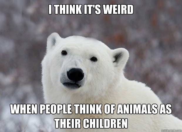 i think it's weird when people think of animals as their children - i think it's weird when people think of animals as their children  Popular Opinion Polar Bear
