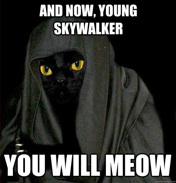 And now, Young Skywalker You will Meow