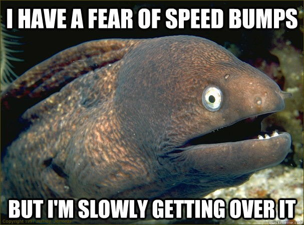 i have a fear of speed bumps but i'm slowly getting over it - i have a fear of speed bumps but i'm slowly getting over it  Bad Joke Eel