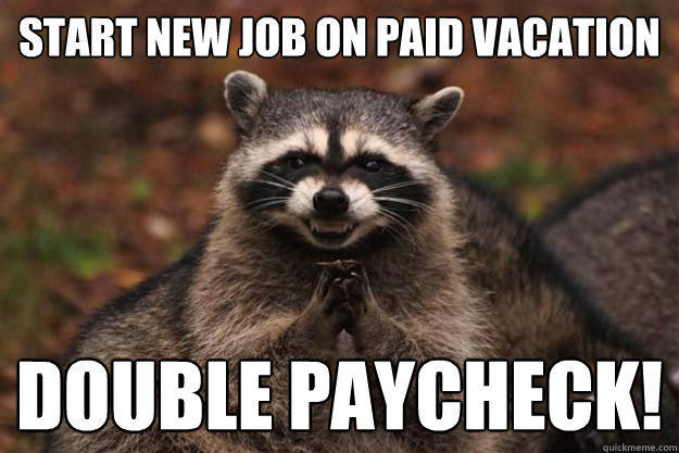 Start new job on paid vacation double paycheck! - Start new job on paid vacation double paycheck!  Evil Plotting Raccoon