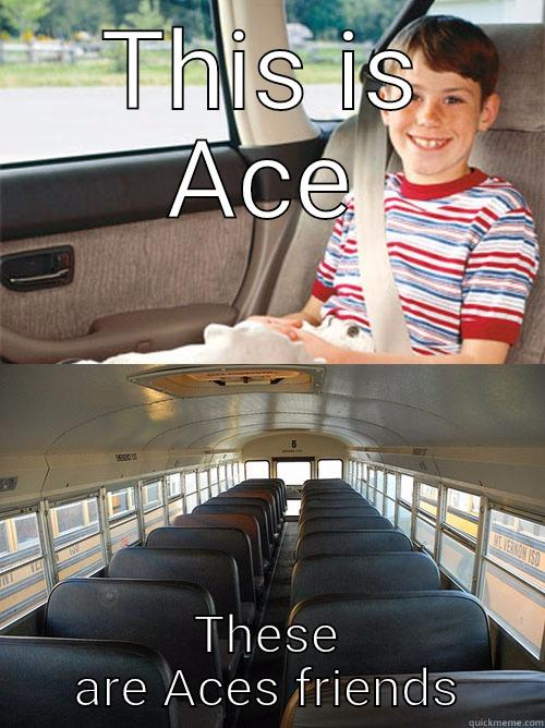 THIS IS ACE THESE ARE ACES FRIENDS Scumbag Seat Belt Laws