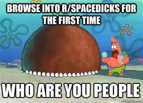 browse into r/spacedicks for the first time