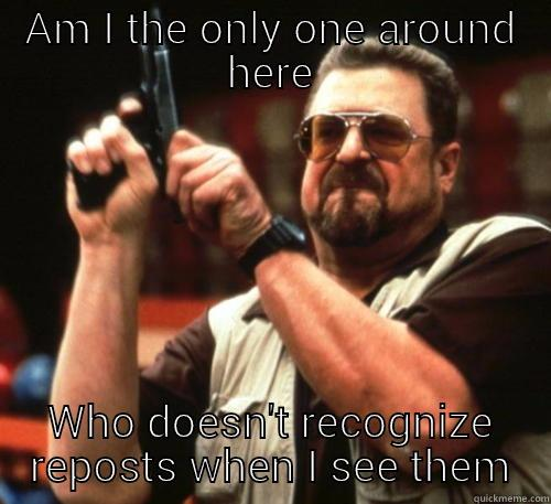 AM I THE ONLY ONE AROUND HERE WHO DOESN'T RECOGNIZE REPOSTS WHEN I SEE THEM Am I The Only One Around Here