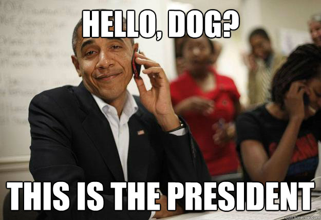 hello, dog? this is the president