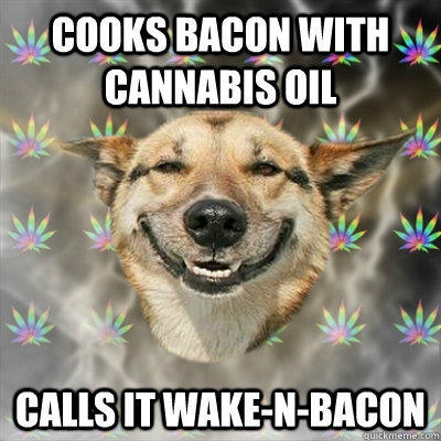 Cooks bacon with cannabis oil Calls it wake-n-Bacon  Stoner Dog