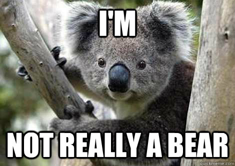 I'm  Not really a bear