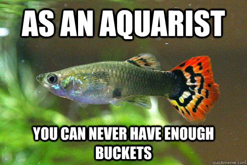 As an aquarist you can never have enough buckets