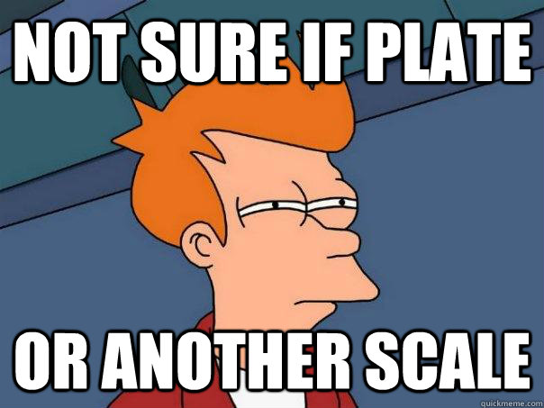 Not sure if plate Or another scale - Not sure if plate Or another scale  Futurama Fry