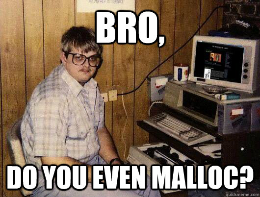 bro, do you even malloc?