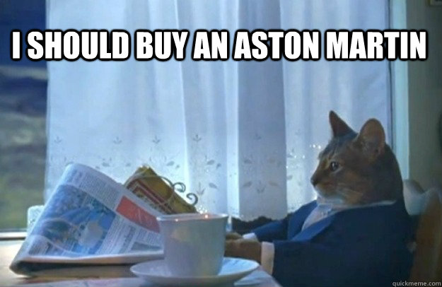 I Should Buy An Aston Martin Sophisticated Cat Quickmeme