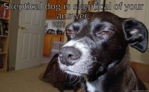SKEPTICAL DOG IS SKEPTICAL OF YOUR ANSWER.  Skeptical Mutt