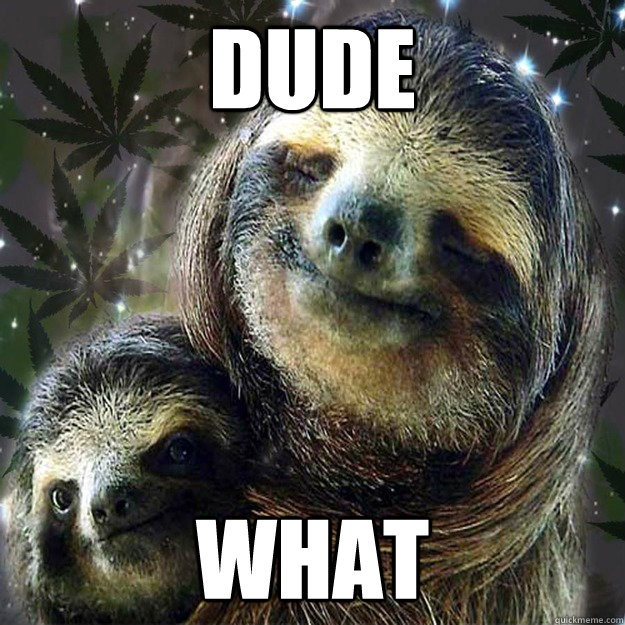 dude what  10 Sloth