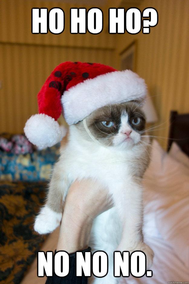 Ho Ho Ho? No No No. - Ho Ho Ho? No No No.  Grumpy xmas
