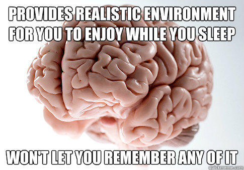 Provides realistic environment for you to enjoy while you sleep won't let you remember any of it - Provides realistic environment for you to enjoy while you sleep won't let you remember any of it  Scumbag Brain