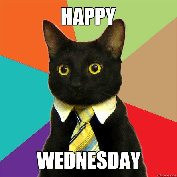 HAPPY WEDNESDAY - HAPPY WEDNESDAY  Business Cat