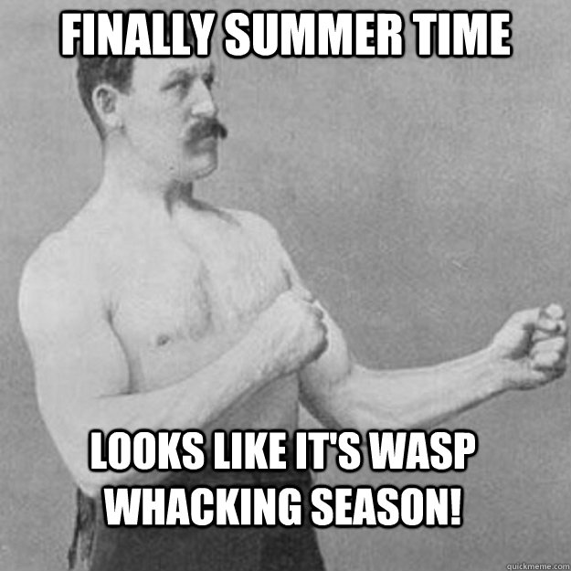 Finally summer time Looks like it's wasp whacking season! - Finally summer time Looks like it's wasp whacking season!  overly manly man