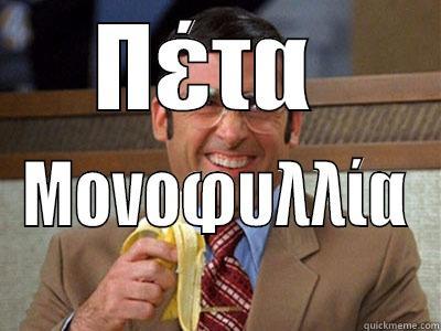 Throw it she said - ΠΈΤΑ  ΜΟΝΟΦΥΛΛΊΑ Brick Tamland