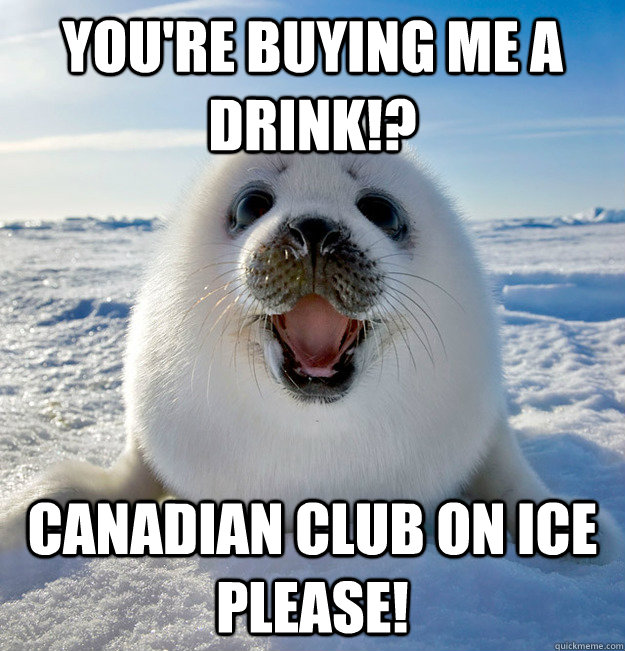 You're buying me a drink!? Canadian club on ice please!