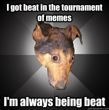 I got beat in the tournament of memes I'm always being beat  Depression Dog