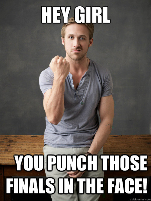 Funny Hey Girl Meme : Hey girl you punch those finals in the face ryan