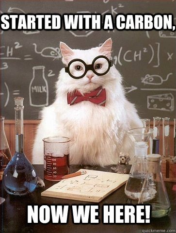 started with a carbon, now we here! - started with a carbon, now we here!  Chemistry Cat