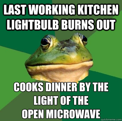 Last working kitchen lightbulb burns out Cooks dinner by the light of the  open microwave - Last working kitchen lightbulb burns out Cooks dinner by the light of the  open microwave  Foul Bachelor Frog