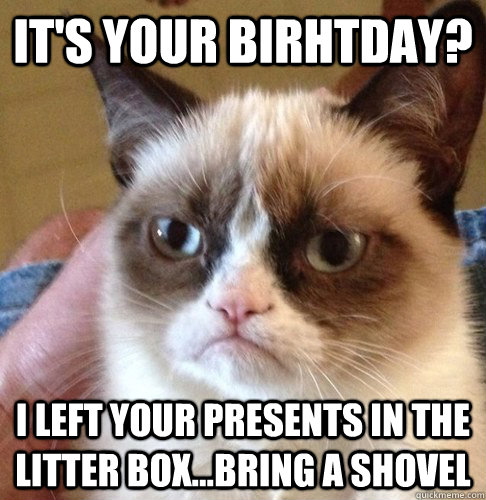 It's your birhtday? I left your presents in the litter box...bring a shovel  Happy Birthday Angry Cat