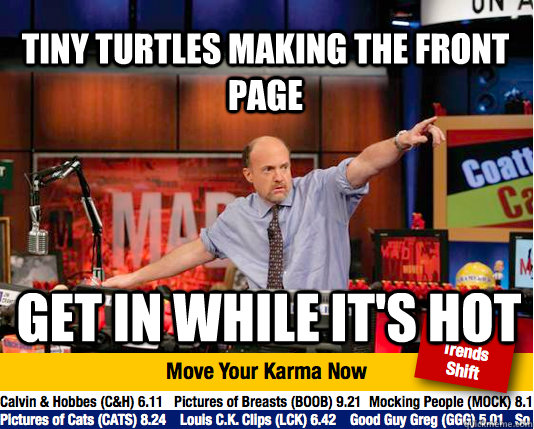 Tiny Turtles making the front page Get in while it's hot - Tiny Turtles making the front page Get in while it's hot  Mad Karma with Jim Cramer
